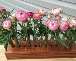 Test Tube Vase Holder Test Tube Vase Etsy