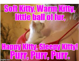 Sleepy Kitty Meme - image tagged in soft kitty imgflip