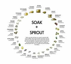 108 best raw food diet images on pinterest healthy tips list of