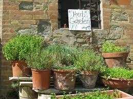 herb garden layout u2013 tuscan home 101