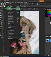 268 best paint shop pro tutorials images on pinterest photo