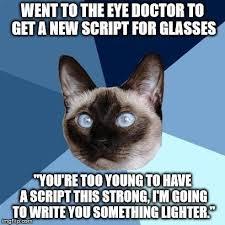 Eye Doctor Meme - wednesday 11 february 2015 meme images 皓 chronic illness cat