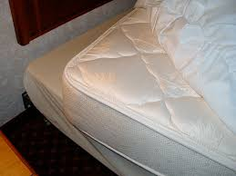 Bed Bugs In Mattress What To Look For In A Mattress Fresh Ideas Bed Bugs Mattresses