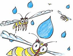 raindrops keep falling on my head a mosquito u0027s lament u2013 phenomena