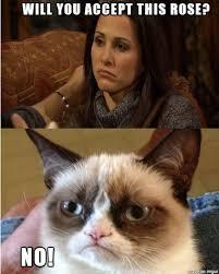 The Bachelorette Meme - bachelorette vs grumpy cat meme on imgur