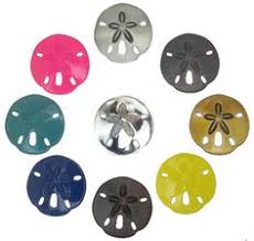 sand dollar cabinet knobs sand dollar drawer handles 139h large designed by peter costello