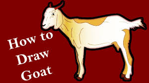 how to draw goat creative art work easy drawing steps youtube