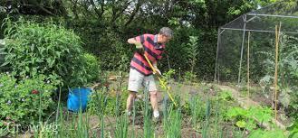 easy weeding for vegetable gardens