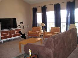 Enchanting Guys Apartment Decor Contemporary Best Idea Home