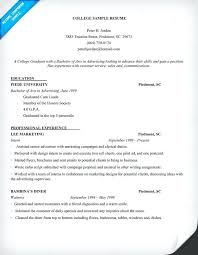 Resume Examples For College Students Internships Sample Resume For A College Student Freshman College Freshman Year
