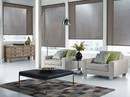 Decorative Roller Window Shades Light Filtering Roller Shades Very Good Light Filtering Shades