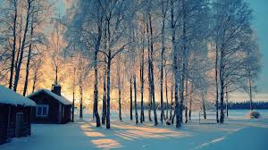 winter wallpaper icon wallpaper hd