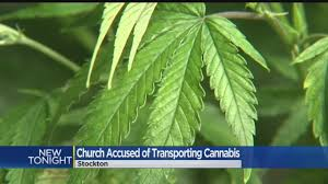 man claims religious liberty played role in marijuana shipment