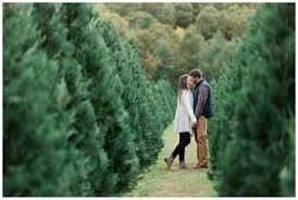 casey chris christmas tree farm engagement york sc u2014 aaron