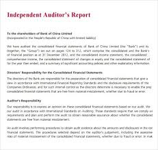audit report spintel co