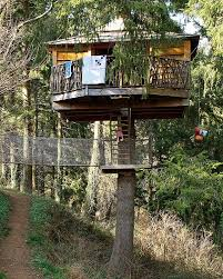 the best playroom is the tree house adorable home