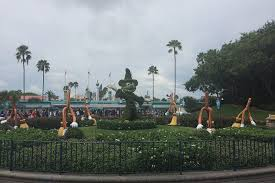 Mickey Mouse Topiary Attempted Bloggery Disney U0027s Hollywood Studios 2014