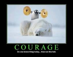Cute Penguin Meme - funny penguin memes 20 pics bajiroo com page 2