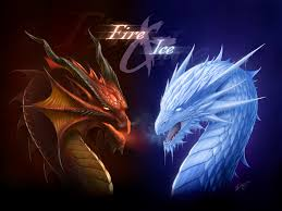 25 images dragons heart dragons