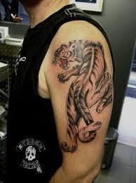 tiger tattoos for arms tiger design on shoulder of
