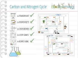 nitrogen cycle crossword ks4 by anjacschmidt teaching