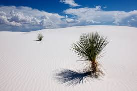 New Mexico national parks images White sands new mexico bob rehak photography jpg
