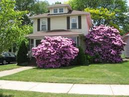 landscape design ideas for small front yards landscaping