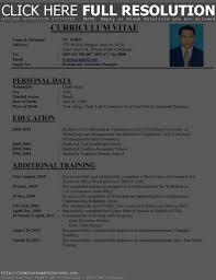 Perfect Resume Templates Perfect Resume Cv How To Writ Peppapp