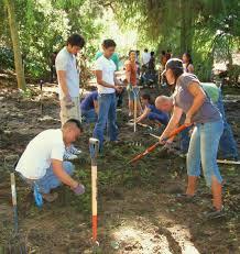 planting natives environment170 u0027s weblog environmental colloquium series synopsis