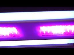 california led grow lights california light works solar storm 440w led grow light uvb 2015