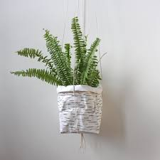 Air Plant Wall Holder Sustainable Storage Solutions Washable Paper By Warmgreycompany