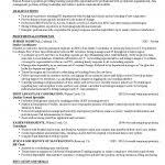 Hr Resume Examples by Hr Resume Examples 20578