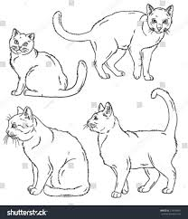 vector outline sketches four cats various stock vector 274339847