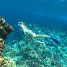snorkeling images Deluxe kona big island hawaii snorkel hula kai by fair wind cruises jpg