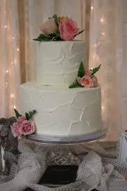 delicately sweet confections explorer birthday world cake