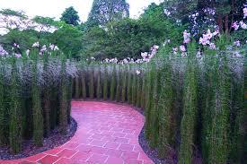 Singapore Botanic Gardens Location Singapore Botanic Gardens Travel Me