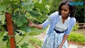 jamie oliver fears for michelle obama u0027s vegetable garden youtube