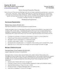 resume exles resume exle 74 account executive resume sle advertising