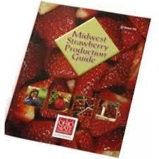 mara des bois strawberry plant
