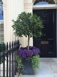 Potted Plant Ideas For Patio by Purple Kale In Grey Pot With Ivy And Try Via Vignettes From