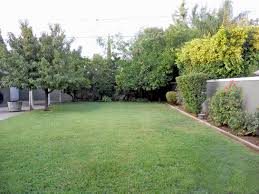 garden design garden design with cleaning up the backyard small