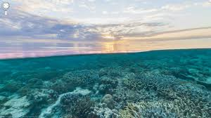 wallpaper google maps google maps dives underwater for great barrier reef tours and more