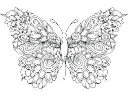 coloring page butterfly monarch monarch butterfly pictures to color radiorebelde info