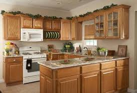 Above Kitchen Cabinets by Greenery Above Kitchen Cabinets Best Decoration Kitchen Remodel