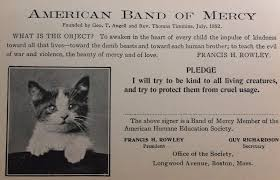 band of mercy membership card be a visual history of