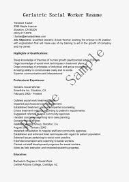 Social Work Resume 100 Resume For Social Worker Resume Sample Fax Fax Cover Sheets