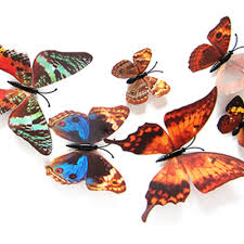 Butterfly 3d Wall Art by Online Shop Fs5 12pcs Decal Wall Stickers Decal Butterflies 3d