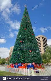 real christmas trees adelaide christmas lights decoration