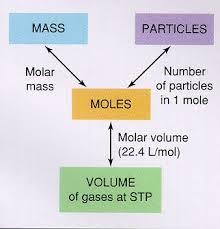 worksheet mole conversions worksheets