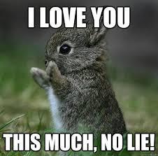 Cute I Love You Meme - funny love memes memeologist com